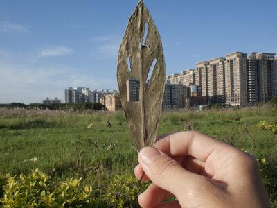 Yahui Wang, 'Leaf holes no.5', 2011