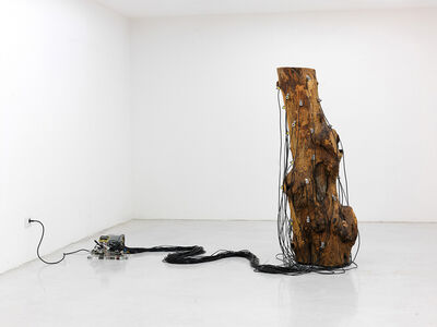 Roberto Pugliese, 'Critici ostinati ritmici', 2010