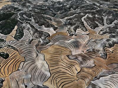 Dryland Farming #5, Monegros County, Aragon