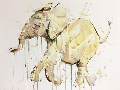 Young Elephant XIV