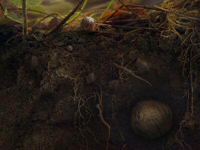 Melinda G. Hurst Frye, 'Underneath the Strawberries', 2016