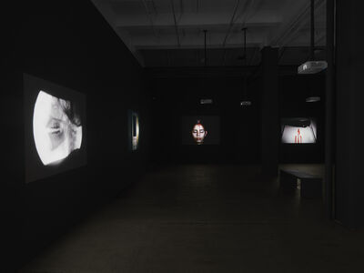 Ana Mendieta: Experimental and Interactive Films