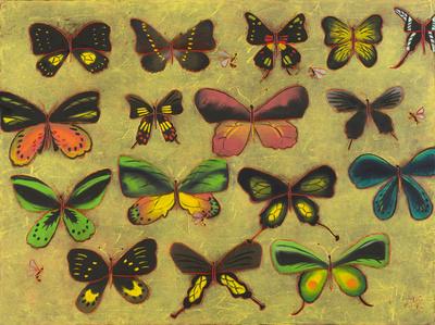 Mouches Papillons