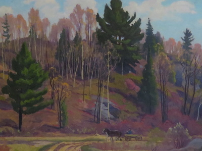 Logging near Dunedin