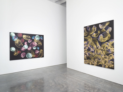 Jiri Georg Dokoupil: New Paintings