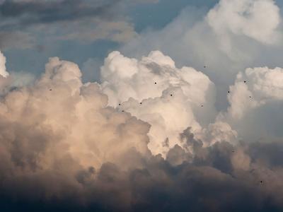 Cloud Study 36