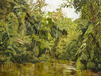Ribera del Amazonas