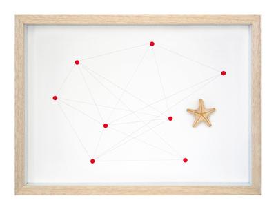 Starfish Nº 1