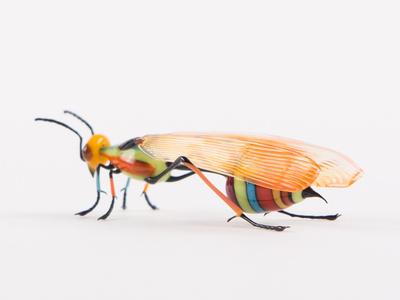 Mod Wasp