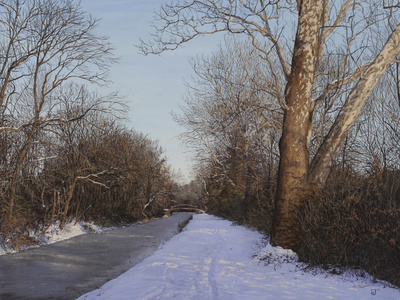 Delaware Canal Towpath, December