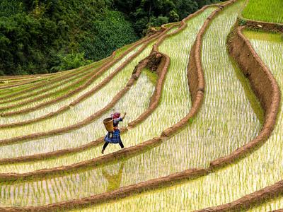 Leap, Vietnam
