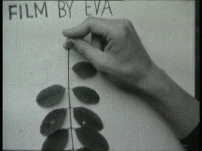Tautological Cinema