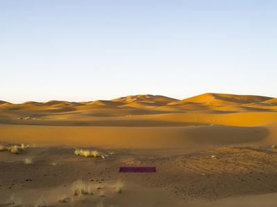 Tapete Sahara