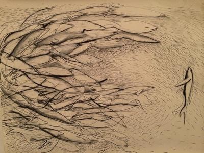 Fish Lines