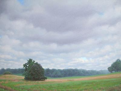 Beal's Farm Cloudy
