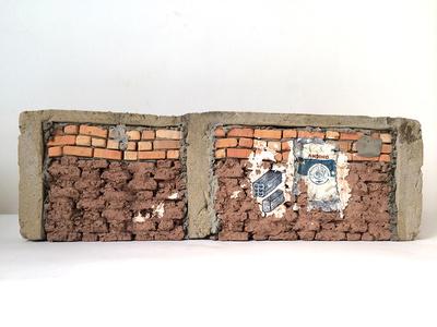 Paredes de Progreso: Andino / Walls of Progress: Andean
