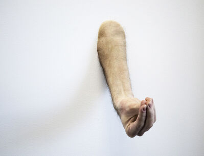 Ed Young, 'Arm #2', 2013