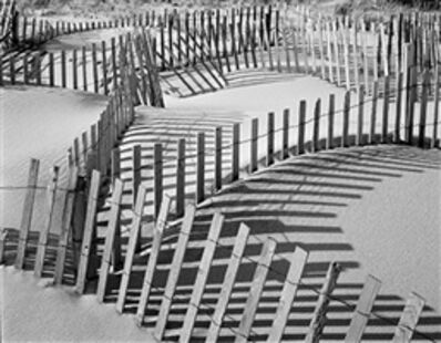 Daniel Jones, 'Beach Fence #7'