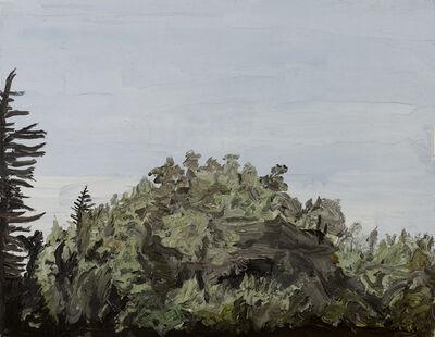 Christian Vinck, 'Cerro de piedra 9', 2013 / 2014