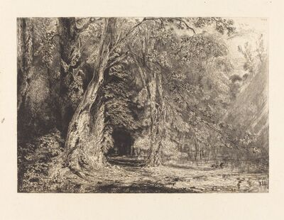 Paul Huet, 'Flooding in the Forest of the Ile Séguin', 1833