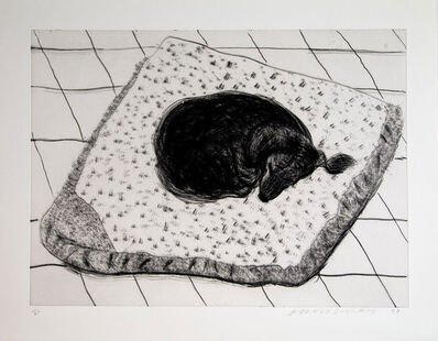David Hockney, 'Dog Etching No. 2', 1998
