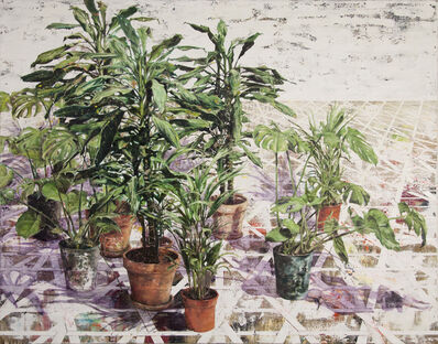 Jeppe Lauge, 'Green potted plants', 2018
