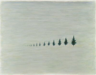 Wang Sean 王璽安, 'The Measurements of Trees', 2015