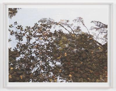 Spencer Finch, 'Reflection Study (Kenrokuen)', 2017
