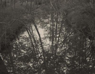 """Koichiro Kurita, '""""A Pool"""" Acadia National Park', 2010"""