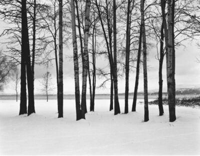 Kurt Markus, 'Flathead Valley, Montana', 2003