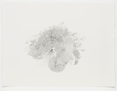 Sandra Cinto, 'Untitled (After Encounter of Water)', 2012