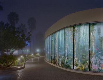 Peter Holzhauer, 'Aquarium in the Fog', 2014