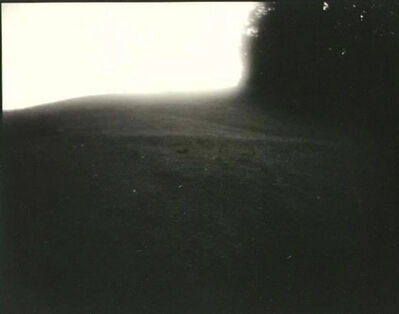 Sally Mann, 'Untitled (Virginia #21, Right Angle)', 1993