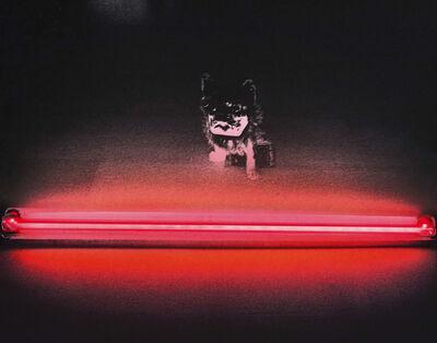 """Silvia Lelli, 'Neon collection / Neon installation, M.P, T.I. n° 2/2, Maniac Production, """"Tragico intervallo n.2"""" Bologna, Galleria d'Arte Moderna, 1978', 1978"""