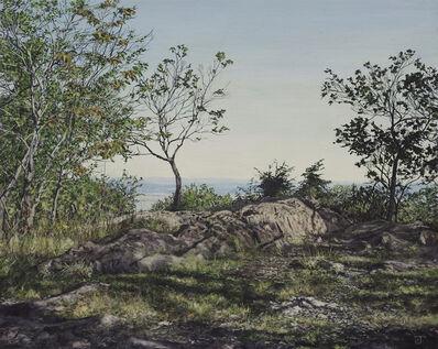 Jeff Gola, 'The Summit at Mt. Norwottuck', 2018