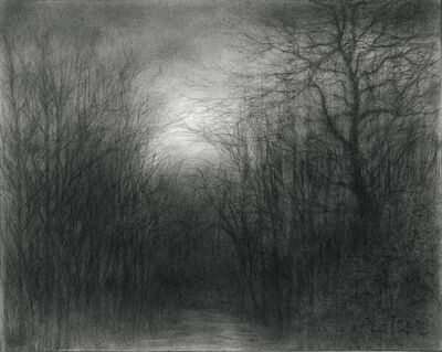 Sue Bryan, 'The Woods We Have Found to Walk', 2018