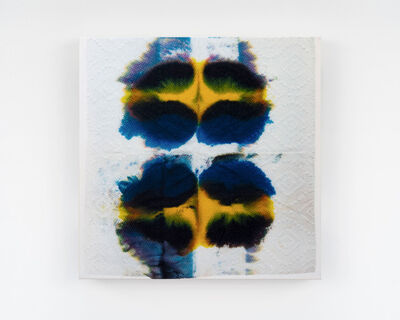 Justin Suazo, 'Piezo_Flora_006 (Blue and Yellow Pansy)', 2018