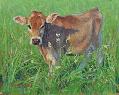 Stephanie Bush, 'Cow Study 27'
