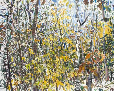 Lilian Garcia-Roig, 'Fleeting Fall', 2008