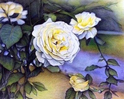 Darrell Windjack, 'Alberta Roses in bloom ', 2018