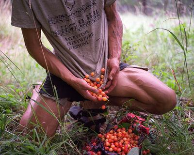 Adrian Chesser, 'Cherries', 2006-2012