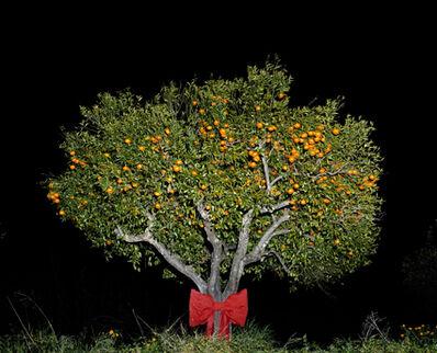 Astrid Kruse Jensen, 'A hidden gift', 2008