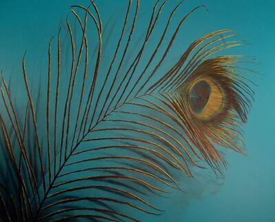 Adam Scott Umbach, 'Peacock Feather', 2009