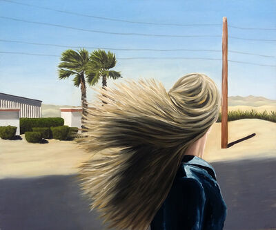 Nele Ouwens, 'Nevada', 2014-2017