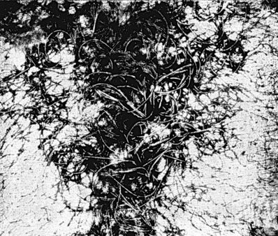 Vera Chaves Barcellos, 'Epidermic Scapes', 1977