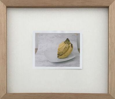 Mauricio Alejo, 'Vertical banana', 2014