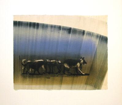 Joel Janowitz, 'Pack IX/XIV', 2005