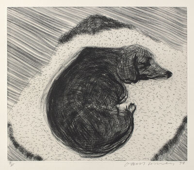 David Hockney, 'Dog Wall No.3, from Dog Wall', 1998