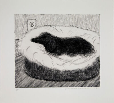 David Hockney, 'Dog Etching No.15', 1998
