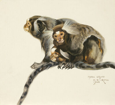 Norbertine Bresslern-Roth, 'Three Common Marmosets', 1924